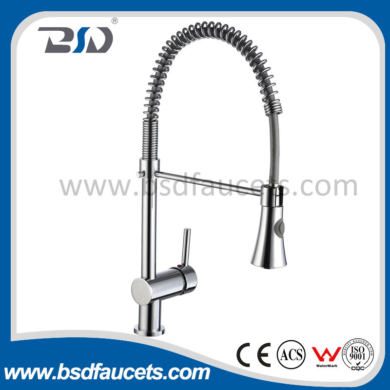 Chinese Solid Brass Pull out Spray Spring Kitchen Faucets