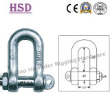 DIN82101 D Type Shackl, European D Shackle, JIS D Type Shackle, Us Type Forged Shackle, Anchor Shackle, Fastener, Rigging Hardware, Maring Hardware