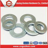 Carbon Steel Flat Washer/Spring Washer/Square Washer/Lock Washer