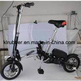 Lightweight Folding Electric Bike with Internal Lithium Battery