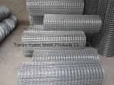 Electro Galvanized Square Wire Mesh for Building/Galvanized Iron Wire Mesh/Hot Dipped Galvanized Welded Wire Mesh