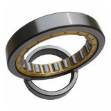 High Accuracy Double Row Cylindrical Roller Bearings for Gearbox Press Machine (NJ2316)