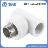 PPR Male Tee Type D Fitting for Building Materials