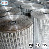 Building Material Galvanized Welded Wire Mesh with ISO 9001