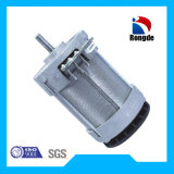 36V Electric Motor for Electric Chain Saw