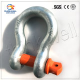 G80 Forged G209 Anchor Bow Shackle with Screw Pin