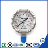 High Quality and Best-Selling Special Diaphragm Pressure Gauge