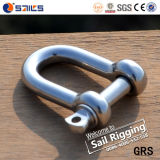 Hot Sale Stainless Steel SS D Shackle