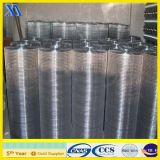 Elcectro Galvanized Welded Wire Mesh for Building