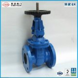 ANSI-125psi/150psi Cast Iron Gate Valve (Rising Stem)