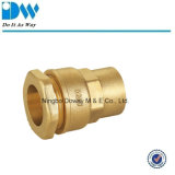 Brass Compression Fittings for PE Pipe Female Coupling