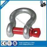Us Type Electric Galv Drop Forged G209 Anchor Shackle