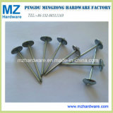 China Unbrella Head Roofing Nails with Umbrella Head