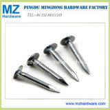 Galvanized Clout Roofing Nail for Woodworking and Building