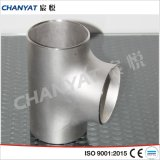 Stainless Steel Tee (Seamless, Welded, Plate)
