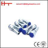 1/4-2' Inch Npsm SAE Female Hydraulic Hose Fitting (21611)
