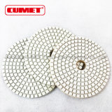 Resin Bonded Diamond Polishing Pad