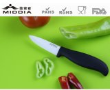 Black Handle Ceramic Kitchen Knives for Paring