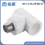 PPR Male Tee Type a Fitting for Building Materials