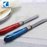 High Quality Acrylic Handle Butter Knife