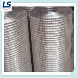 Stainless Steel Welded Wire Mesh 1/4