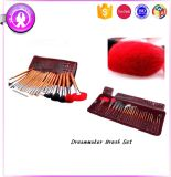 Colorful Hair 24PCS Cosmetic Brush Set with PU Bag