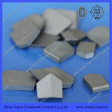 Tungsten Carbide Cutting Blade for Anchor Bit