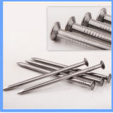 Factory Price Round Iron Nail Construction Nail