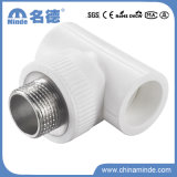 PPR Male Tee Type E Fitting for Building Materials