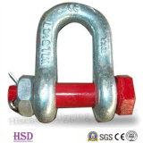 Us Type Drop Forged D Shackle G2150 of Rigging Hardware