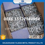 Electroc Galvanized Nails, Umbrella Roofing Nails