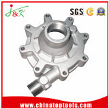 OEM Customized Aluminum Alloy Die Casting for Auto Part