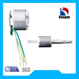 High Speed/Efficiency 36V Electric Brushless Motor for Suction Leaf Blower