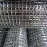 PVC/ Stainless Steel/ Galvanized Welded Wire Mesh for Building