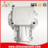 Aluminum/ Zinc Alloy Die Casting for Machinery Part